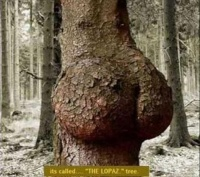 Nature Sex Art7